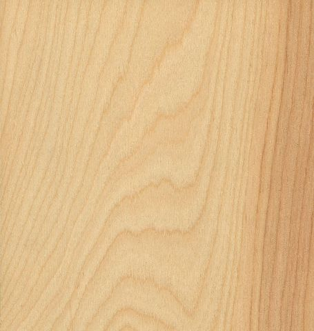 Rotary Natural Birch Solid Core Wood Doors