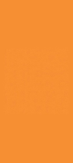 D501-60 Orange-Grove Plastic Laminate Commercial Wood Doors, Matte Finish