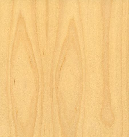 Delightful Plain Sliced White Maple Door Clear