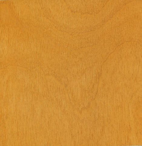Rotary-Natural-Birch-Door-Blonde