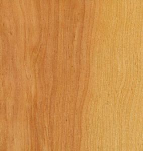Rotary Natural Birch Wood Door Clear