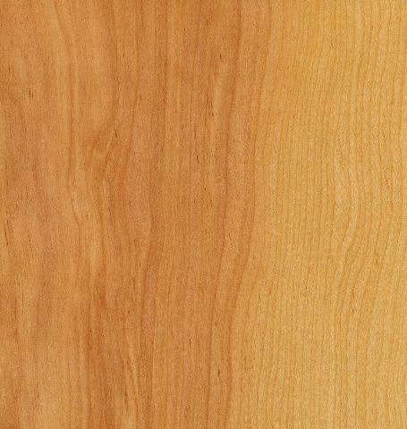 Rotary-Natural-Birch-Door-Clear